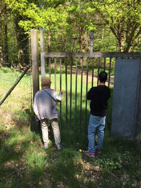 A gate and part of a fence. Mindu is looking through the gate on a meadow and some treas. One of Barbara Lorber's grandsons is doing the same.